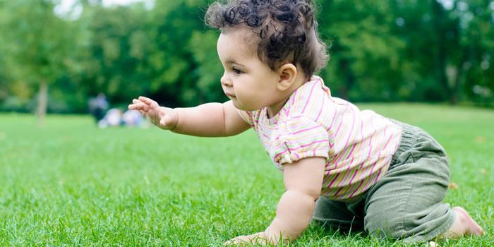 Indicadores de desarrollo del bebe de 6 a 12 meses