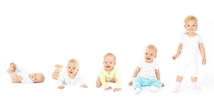 El desarrollo del bebe